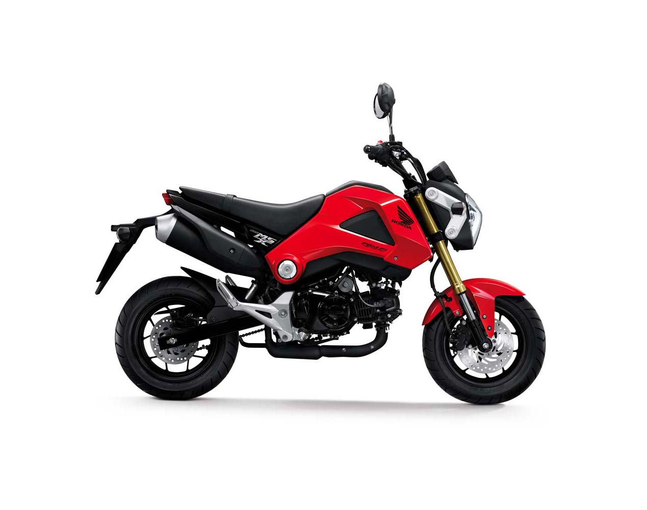 2014 Honda Grom Perfect Small City Motorcycle