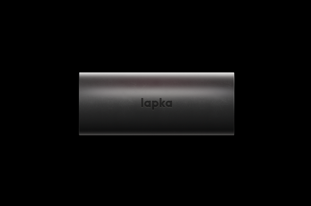 Lapka_bam4